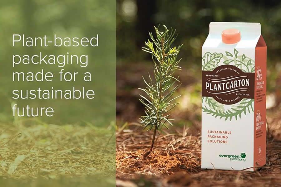 evergreen-packaging-ecm-services